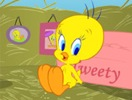Tweety Pet!