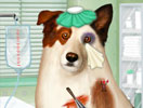 Doctor for Dog With a Blog